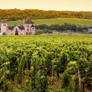 Livres Bourgogne