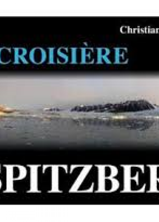 En croisière en Spitzberg