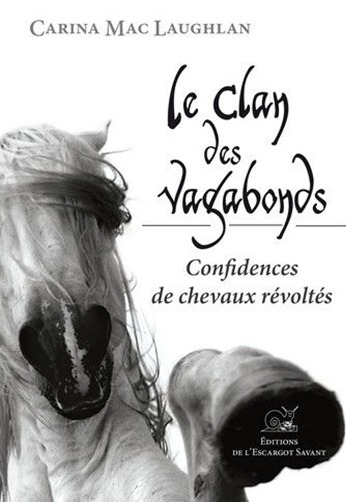 Le clan des vagabonds