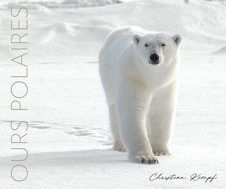 Ours polaires Christian Kempf